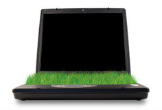 Grüner Computer stockfoto