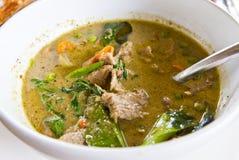 Grüner Curry des Rindfleisches Stockfotografie