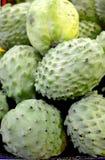 Grüner Durian in den Tropen stockfotografie