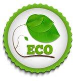 Grüner ECO-Aufkleber Stockbilder
