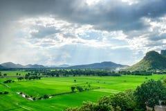 Grüner Feldberg in der Landschaft Stockfotos