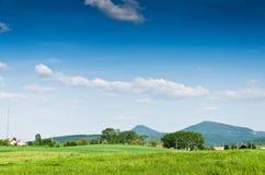 Grüner Feldhintergrund Lizenzfreie Stockfotos