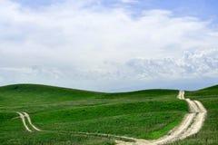 Grüner Feldhintergrund Stockfotografie