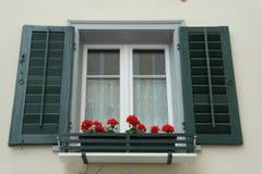 Grüner Fenster-Fensterladen stockbild