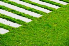 Grüner Fußgängerübergang Stockfotografie