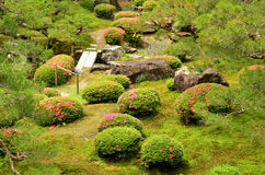 Grüner Garten lizenzfreie stockfotos