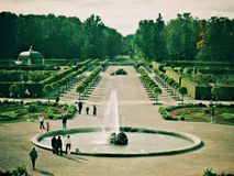 Grüner Garten lizenzfreies stockbild