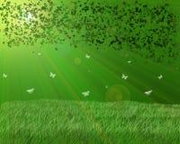 Grüner Garten Stockfotos