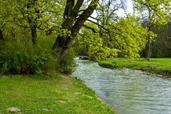 Grüner Garten - Fluss- Frühling Stockfotos