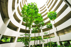 Grüner Garten im Parkplatzgebäude lizenzfreie stockfotos