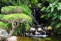 Grüner Garten mit dem Wasserfallen stockbilder
