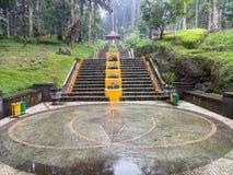 Grüner Gartenpark Stockbild