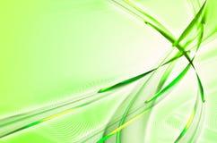 Grüner gefiederter Auszug Lizenzfreie Stockfotos