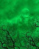 Grüner gespenstischer Hintergrund Lizenzfreie Stockbilder