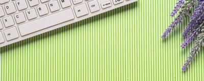 Grüner gestreifter Hintergrund mit Tastatur, Blumen Lizenzfreie Stockfotografie