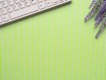 Grüner gestreifter Hintergrund mit Tastatur, Blumen Stockbild