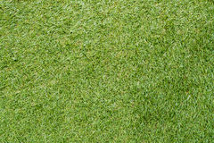 Grüner Glashintergrund Lizenzfreies Stockbild