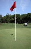 Grüner Golfplatz, vertikal Lizenzfreies Stockfoto