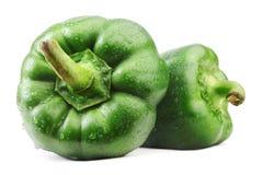 Grüner grüner Pfeffer. Stockfotos
