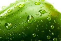 Grüner grüner Pfeffer mit Wassertröpfchen Lizenzfreies Stockfoto