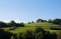 Grüner Hügel Stockbilder