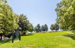 Grüner Hügel in Denver Park Stockbilder