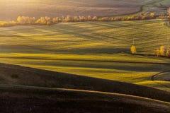 Grüner Hügel im Tal Lizenzfreies Stockfoto