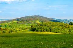 Grüner Hügel mitten in sonniger Frühlingslandschaft Javornik-Berg nahe Liberec, Tschechische Republik Stockfotografie