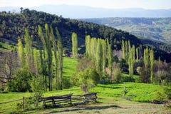 Grüner Hügel und Berg Lizenzfreies Stockfoto