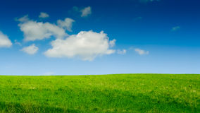 Grüner Hügel und blauer Himmel Stockbilder