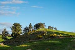Grüner Hügel und blauer Himmel Lizenzfreies Stockfoto