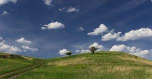 Grüner Hügel und ein großer blauer Himmel mit einigen weißen Wolken stockbild