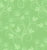 Grüner Hintergrund Stockfotos