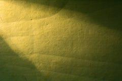 Grüner Hintergrund belichtet vom Scheinwerfer der linken Ecke Stockfotos