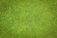 Grüner Hintergrund des Golfs stockfotografie