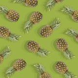 Grüner Hintergrund mit Bild der reifen Ananas Stockfotografie