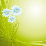Grüner Hintergrund mit Blumen Stockfoto