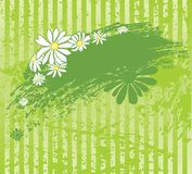 Grüner Hintergrund mit Gänseblümchen stock abbildung