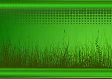 Grüner Hintergrund mit Gras Lizenzfreies Stockfoto