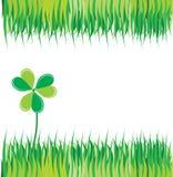 Grüner Hintergrund mit Gras und Klee Stockfotografie