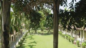 Grüner Hof des Hotels in Asien Dorf in Nationalpark Chitwan, Nepal stock video