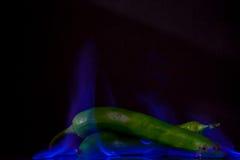 Grüner Jalapeno im blauen Feuer Stockfotos