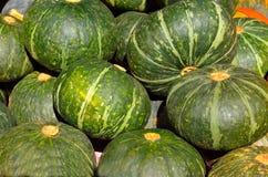 Grüner japanischer Kürbis auf Markt stockfoto