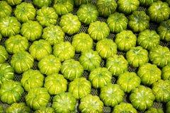 Grüner Kürbis stockfotos
