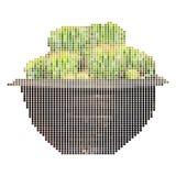 Grüner Kaktus im Topf Lizenzfreies Stockbild