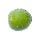 Grüner Kalk mit Wassertropfen Stockbilder
