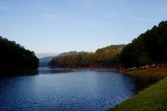 Grüner Kiefernwald mit dem Kampieren des Touristen nahe dem See mit Nebel über dem Wasser morgens, Schmerzgefühl oung Maehongson- lizenzfreie stockbilder