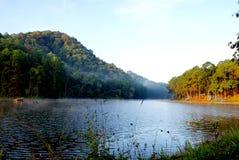 Grüner Kiefernwald mit dem Kampieren des Touristen nahe dem See mit Nebel über dem Wasser morgens, Schmerzgefühl oung Maehongson- lizenzfreies stockbild