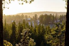 Grüner Kiefernwald und ein entferntes Dorf Stockfoto