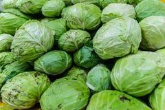 Grüner Kopfsalat stockfotos